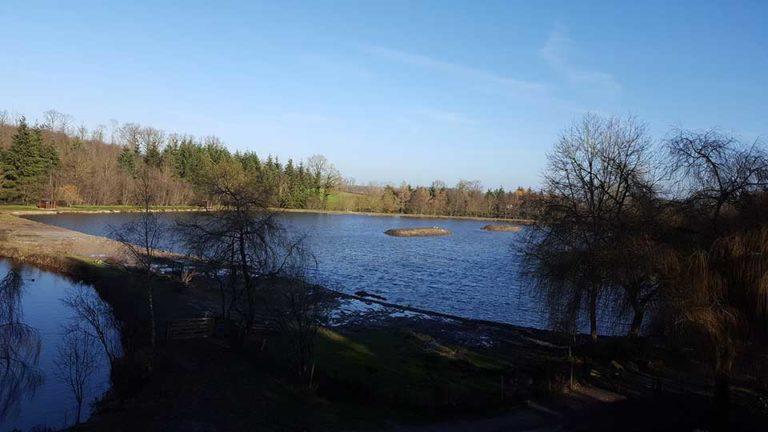 lake1_2019